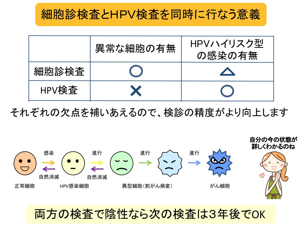 細胞診とHPV併用検査が有効的な理由