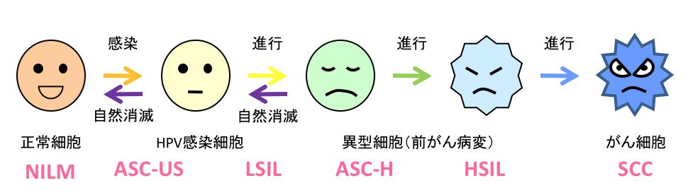 細胞診の判定基準 ベセスダシステムの説明