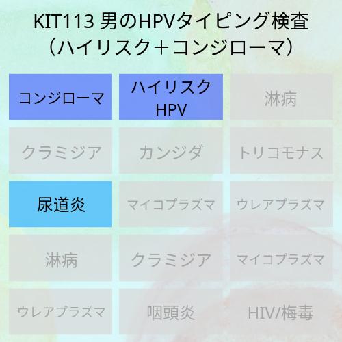 男性用のハイリスクHPVとコンジローマのタイピング検査です。イボがある場合にはハイリスクHPVが重複感染している可能性もあります。