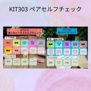KIT303