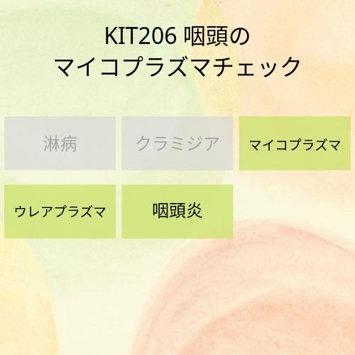 kit206