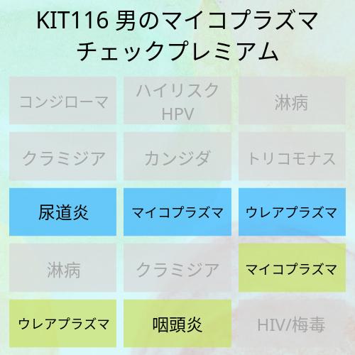 KIT116