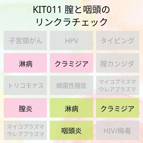 KIT011