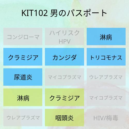 KIT102
