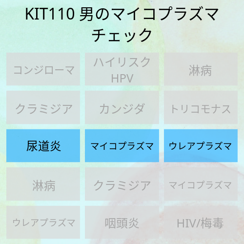 KIT110