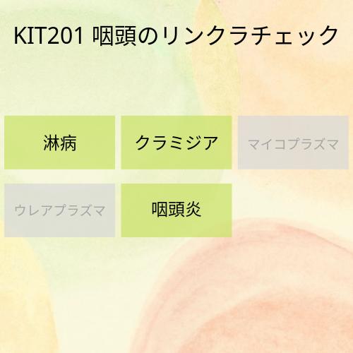 kit201