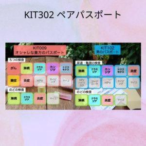 KIT302