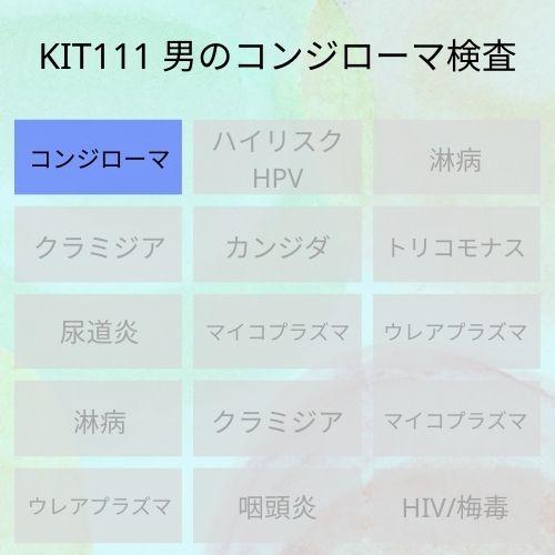 KIT111