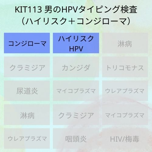 KIT113